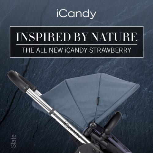 New StrawberrySquareSlate-jpg
