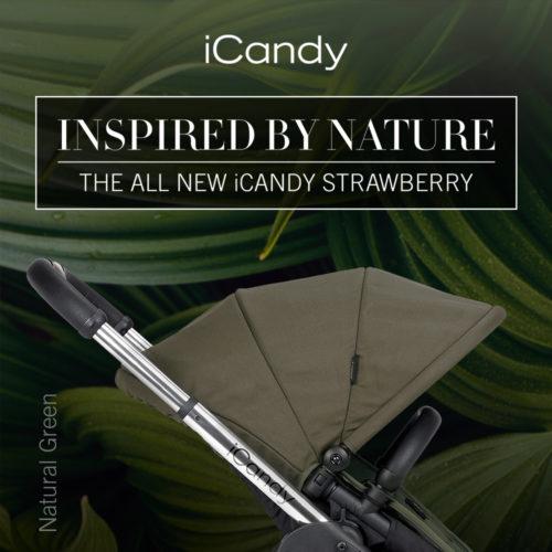New StrawberrySquareNatural Green-jpg