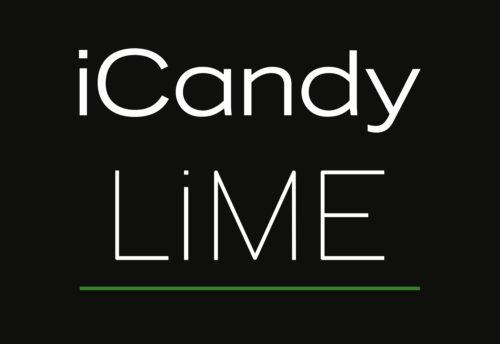Lime-Logo-Black